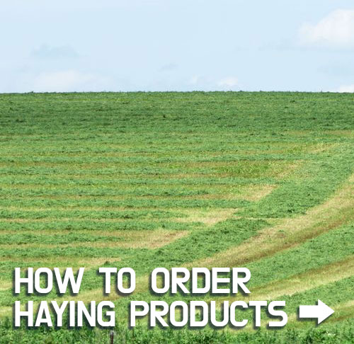 How to Order Haying Products